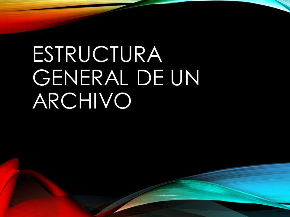 ESTRUCTURA GENERAL DE UN ARCHIVO
