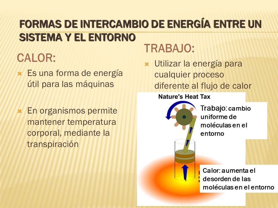 Formas de Intercambio de Energía entre un sistema y el entorno