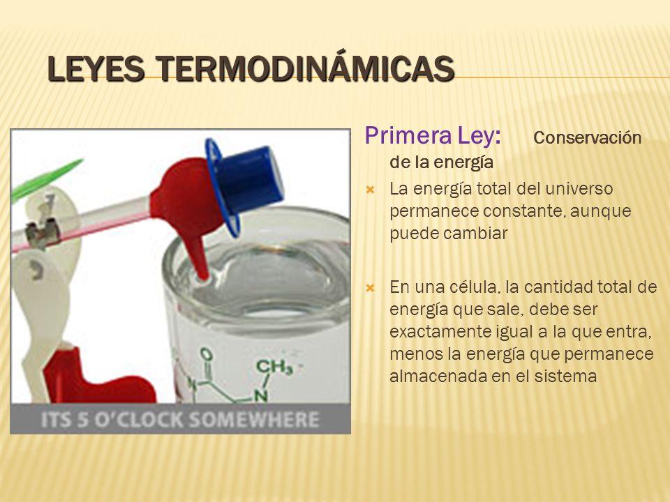 Leyes Termodinámicas Primera Ley: Conservación de la energía