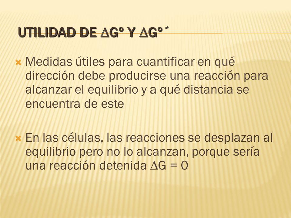 Utilidad de DGº y DGº´