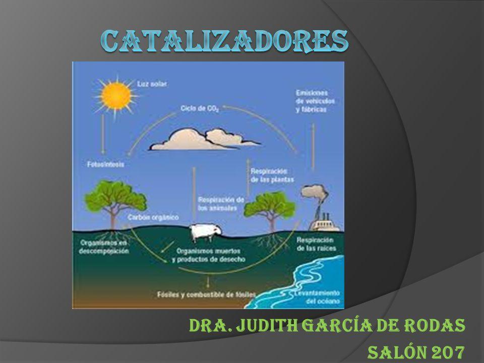 Dra. Judith García de Rodas Salón 207