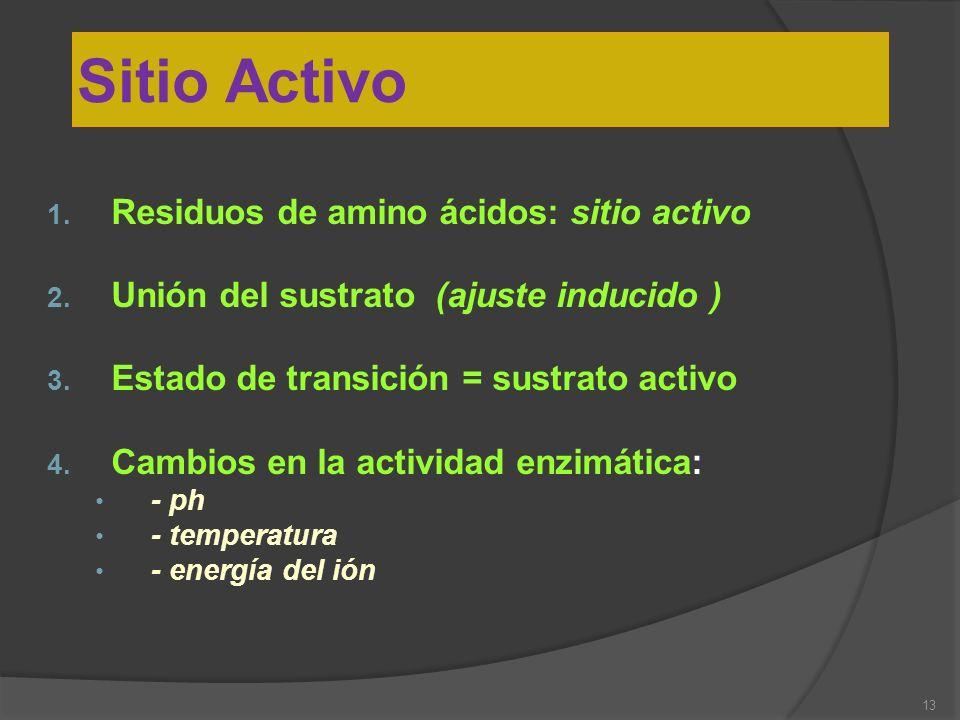 Sitio Activo Residuos de amino ácidos: sitio activo