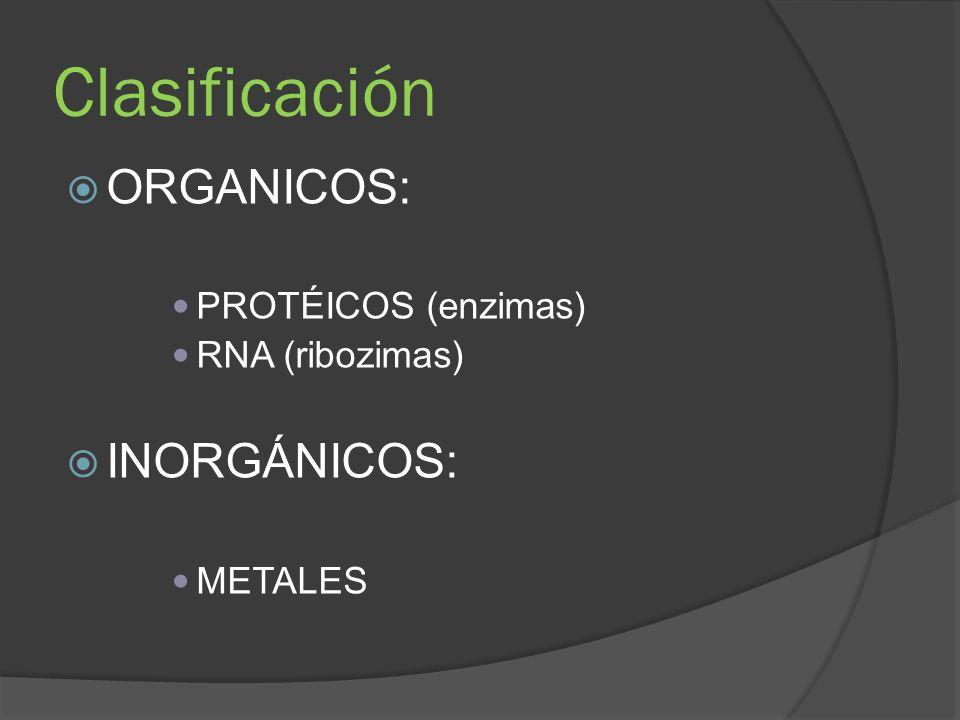 Clasificación ORGANICOS: INORGÁNICOS: PROTÉICOS (enzimas)