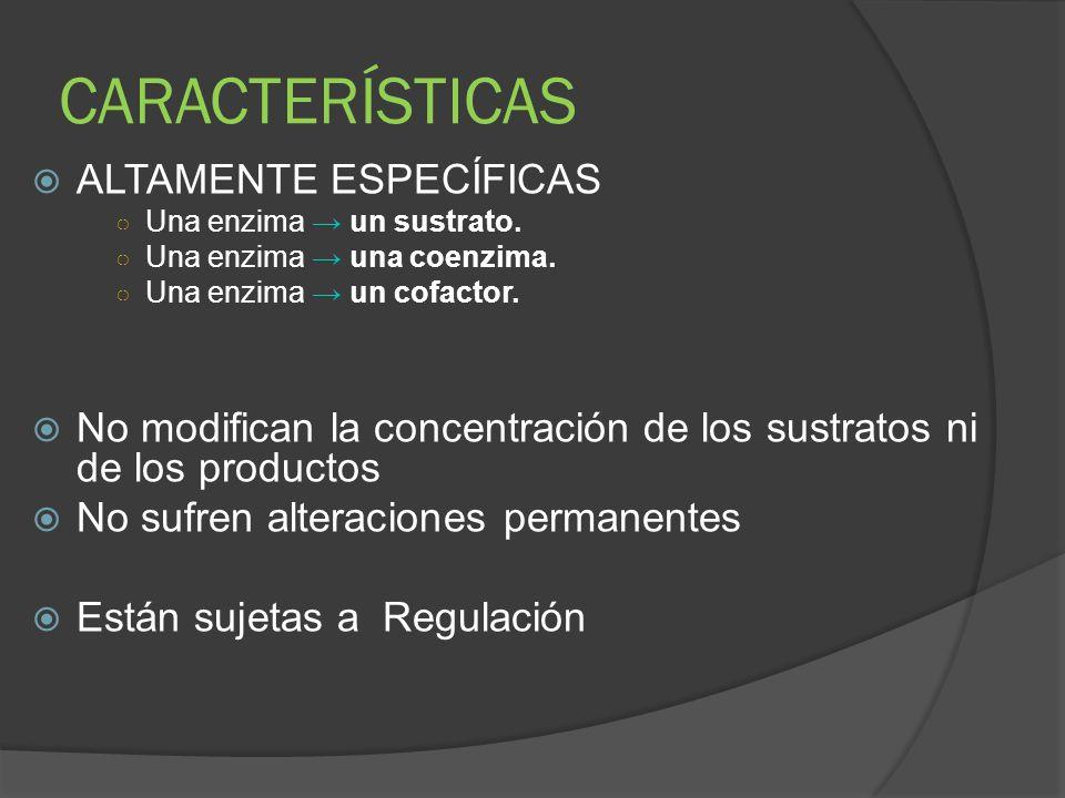 CARACTERÍSTICAS ALTAMENTE ESPECÍFICAS