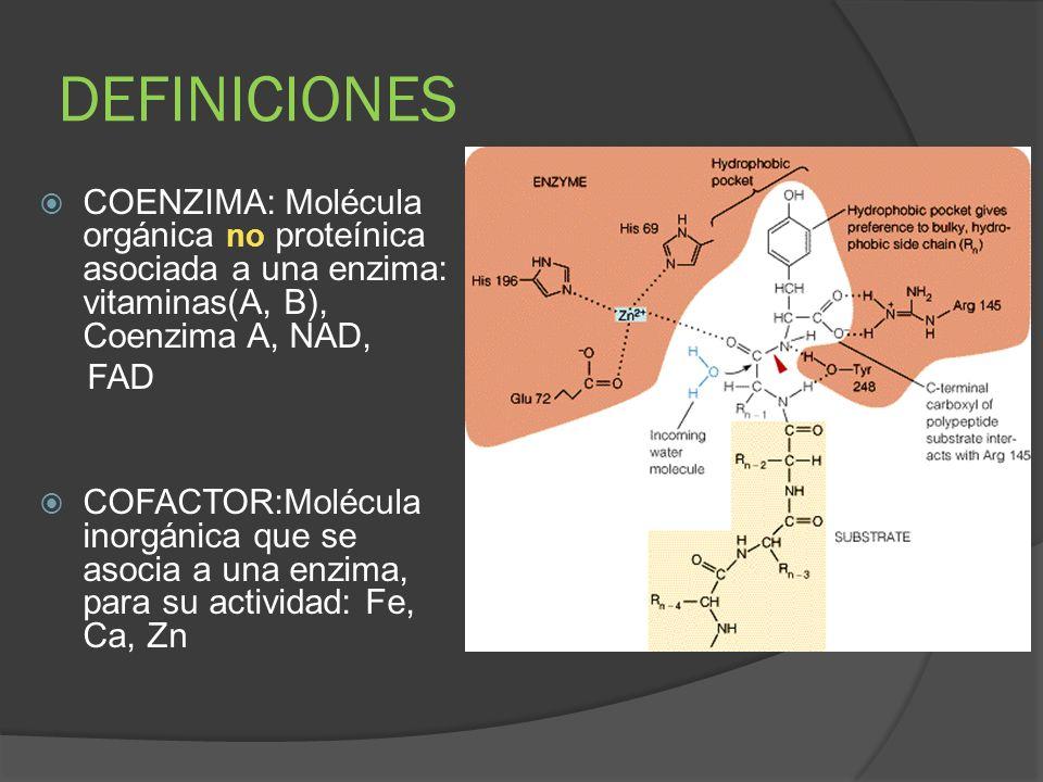 DEFINICIONESCOENZIMA: Molécula orgánica no proteínica asociada a una enzima: vitaminas(A, B), Coenzima A, NAD,
