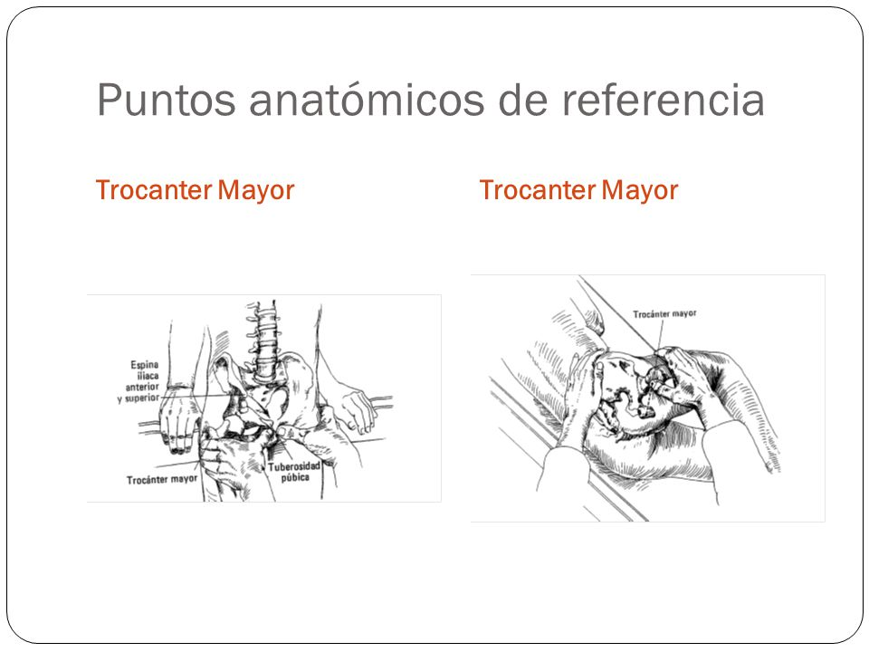 Puntos anatómicos de referencia