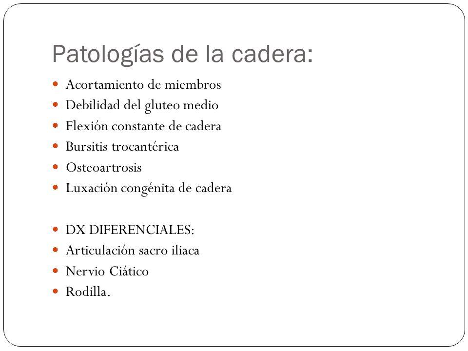 Patologías de la cadera: