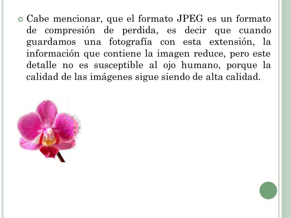 Cabe mencionar, que el formato JPEG es un formato de compresión de perdida, es decir que cuando guardamos una fotografía con esta extensión, la información que contiene la imagen reduce, pero este detalle no es susceptible al ojo humano, porque la calidad de las imágenes sigue siendo de alta calidad.