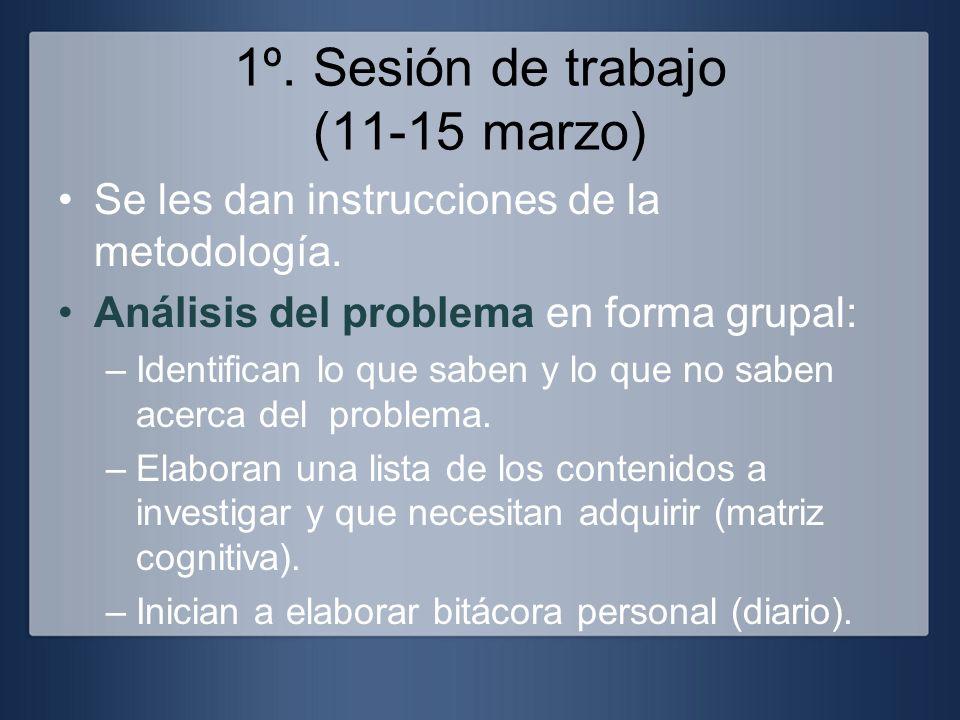1º. Sesión de trabajo (11-15 marzo)