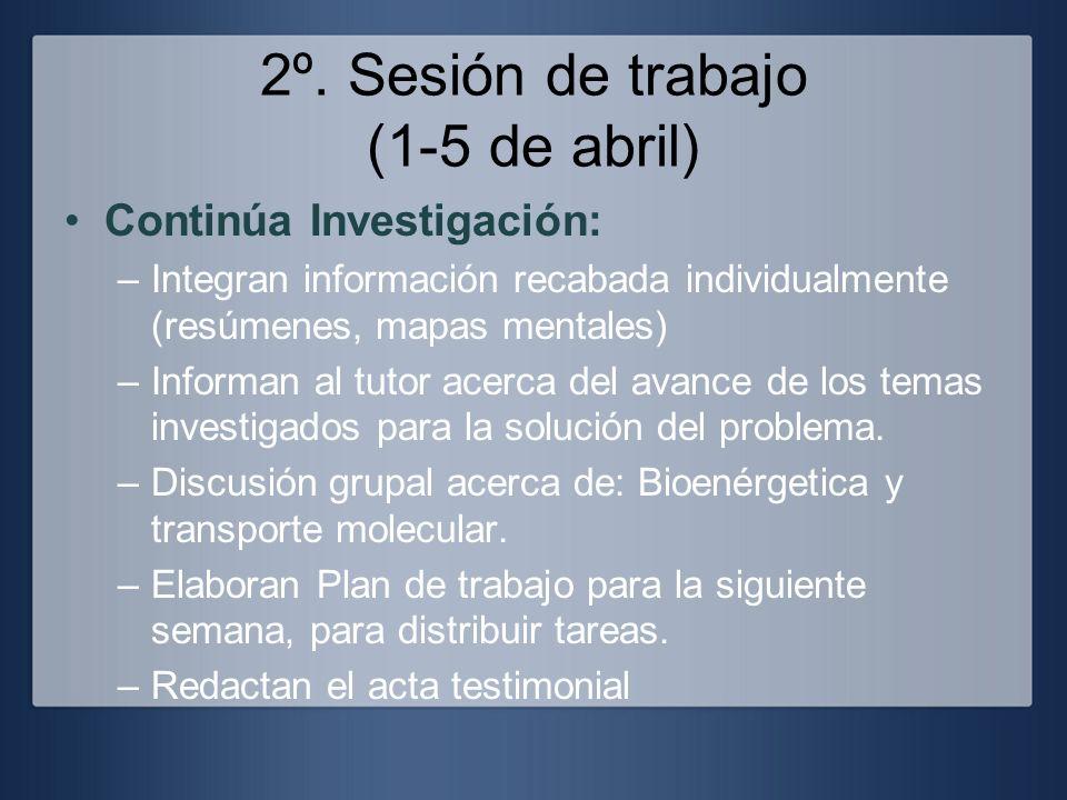 2º. Sesión de trabajo (1-5 de abril)