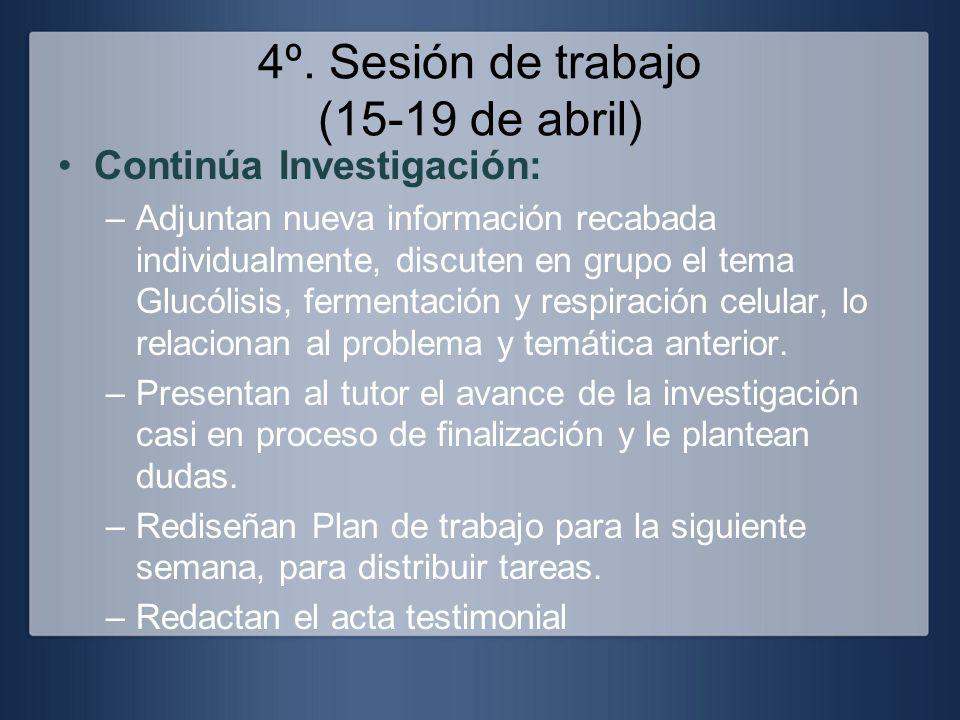 4º. Sesión de trabajo (15-19 de abril)