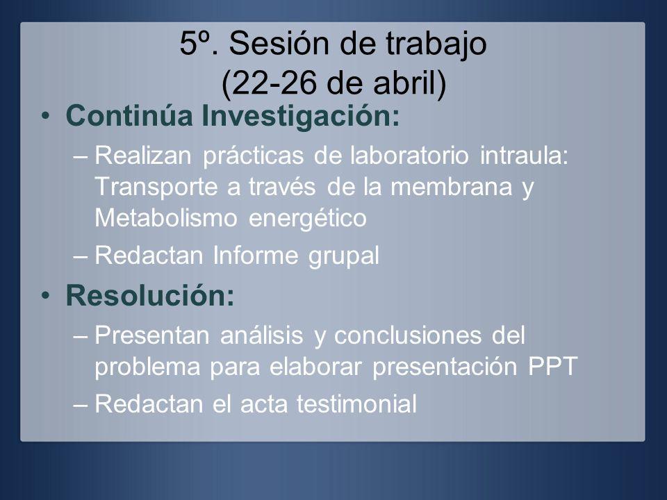 5º. Sesión de trabajo (22-26 de abril)