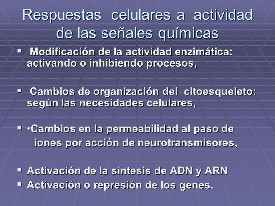 Respuestas celulares a actividad de las señales químicas