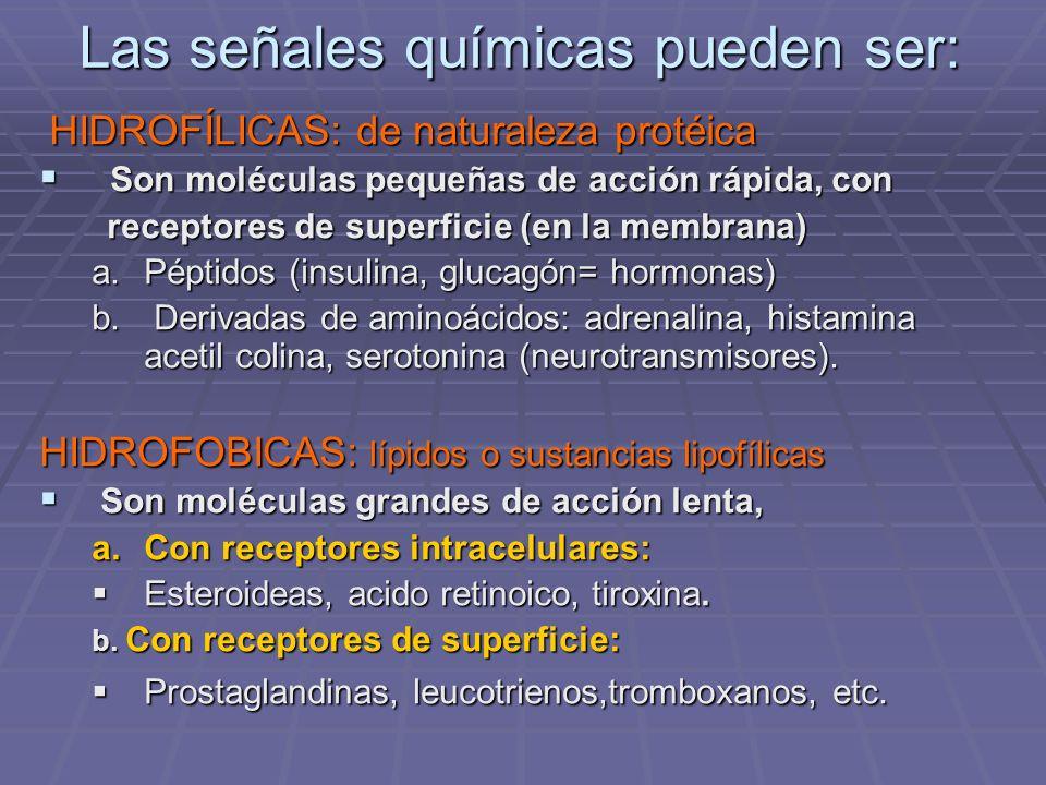 Las señales químicas pueden ser: