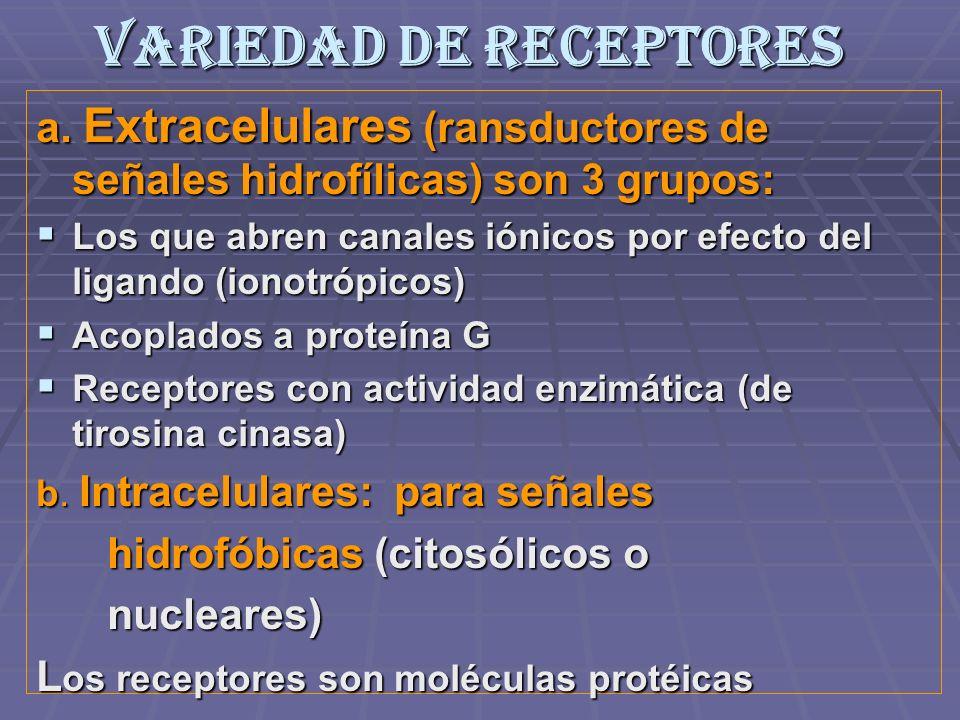 Variedad de Receptores