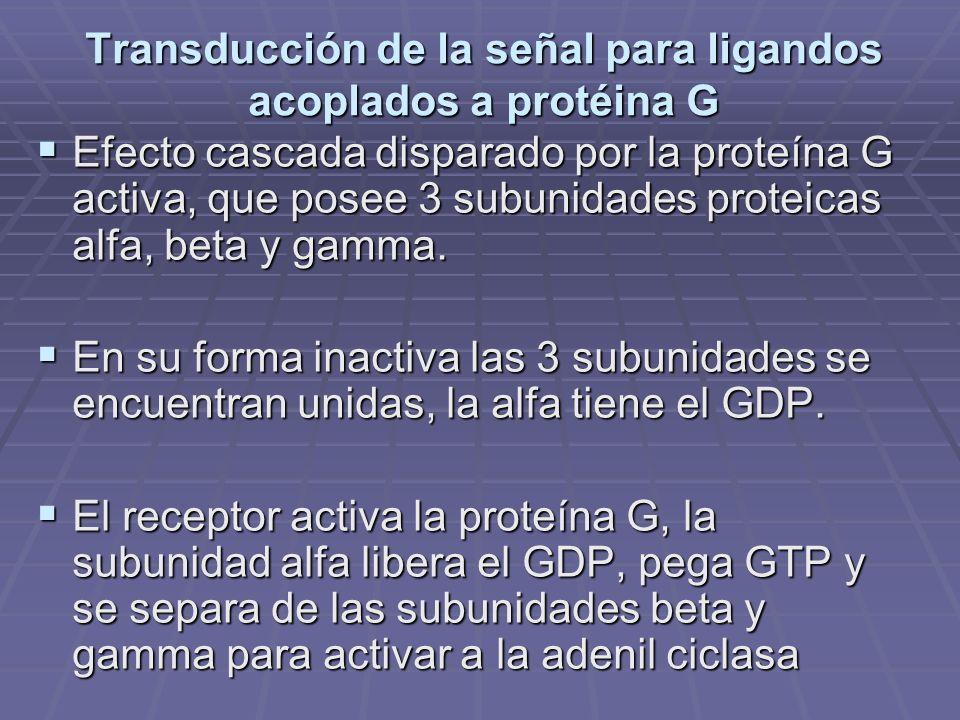 Transducción de la señal para ligandos acoplados a protéina G