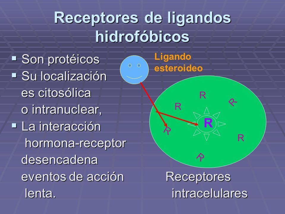 Receptores de ligandos hidrofóbicos
