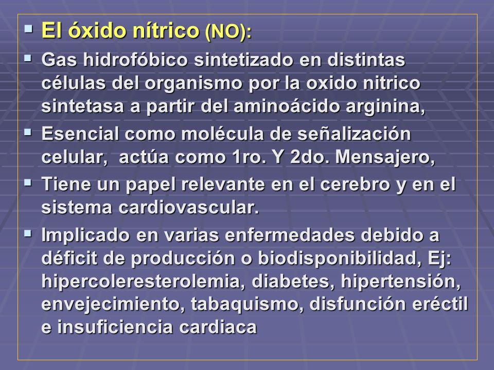 El óxido nítrico (NO):