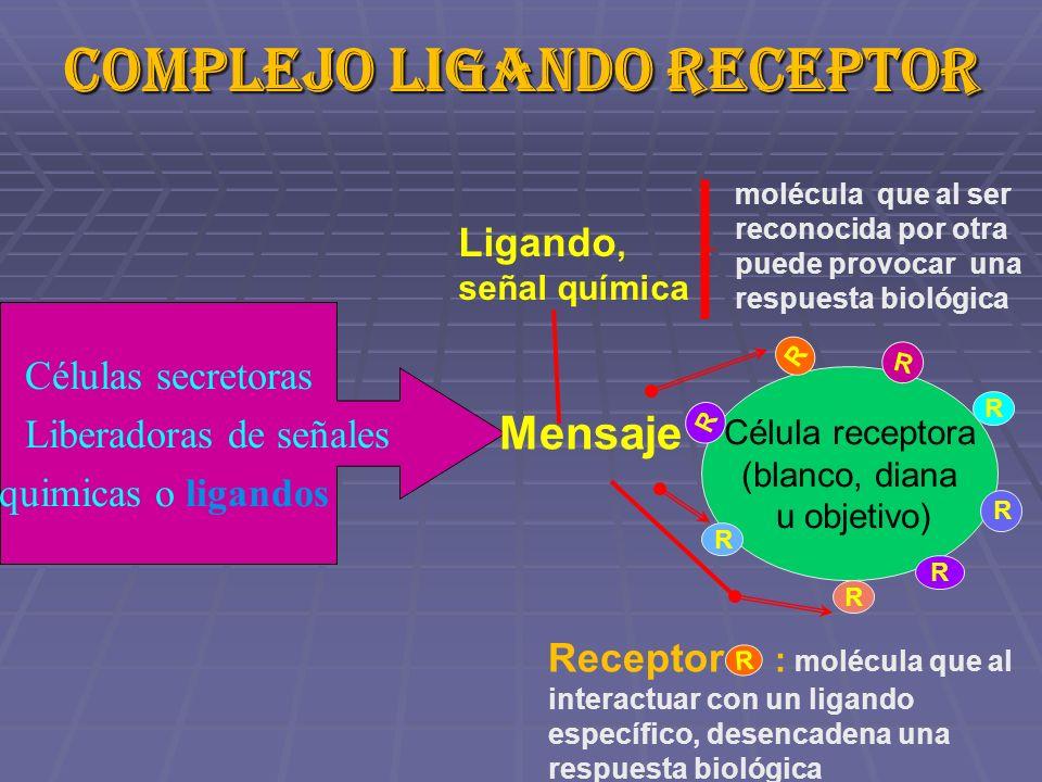 Complejo ligando receptor