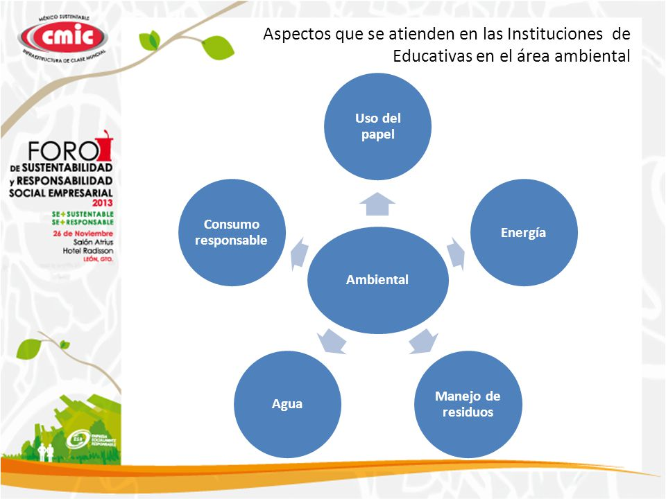 Aspectos que se atienden en las Instituciones de Educativas en el área ambiental