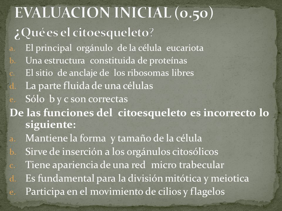 EVALUACION INICIAL (0.50) ¿Qué es el citoesqueleto