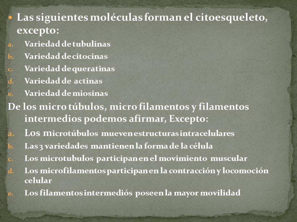 Las siguientes moléculas forman el citoesqueleto, excepto: