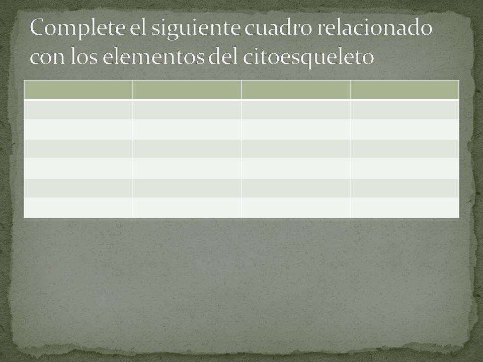 Complete el siguiente cuadro relacionado con los elementos del citoesqueleto
