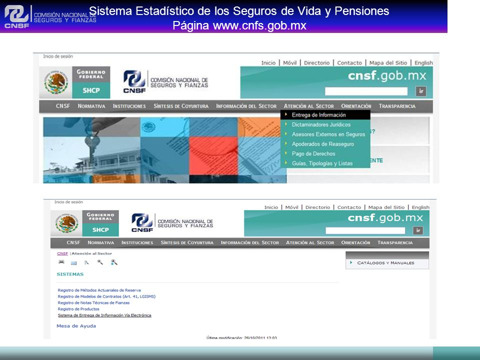 Sistema Estadístico de los Seguros de Vida y Pensiones Página www.cnfs.gob.mx