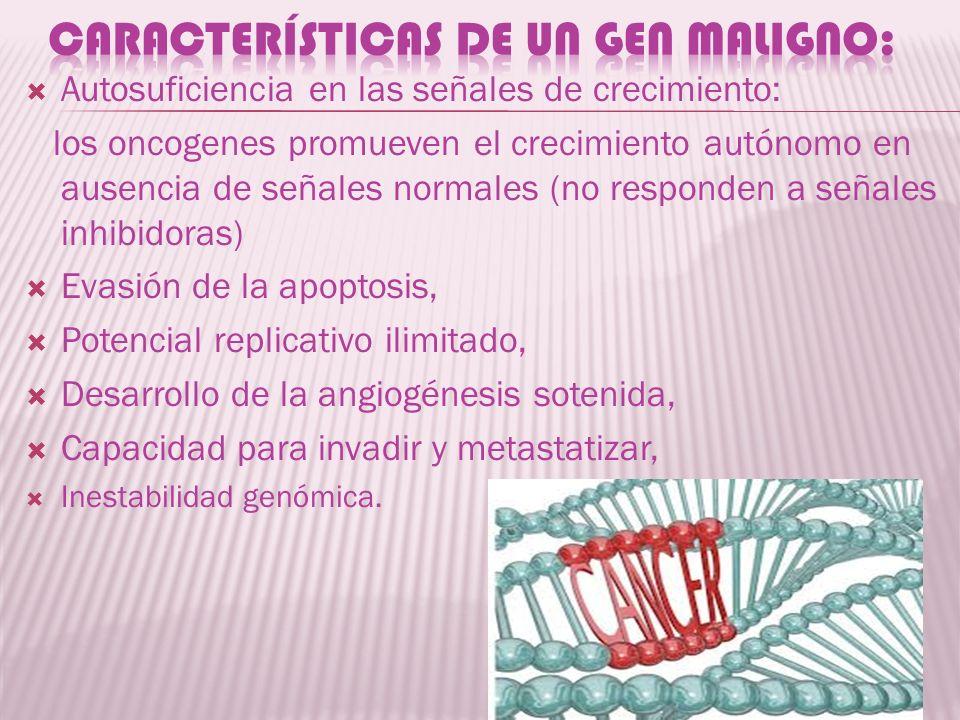 Características de un gen maligno:
