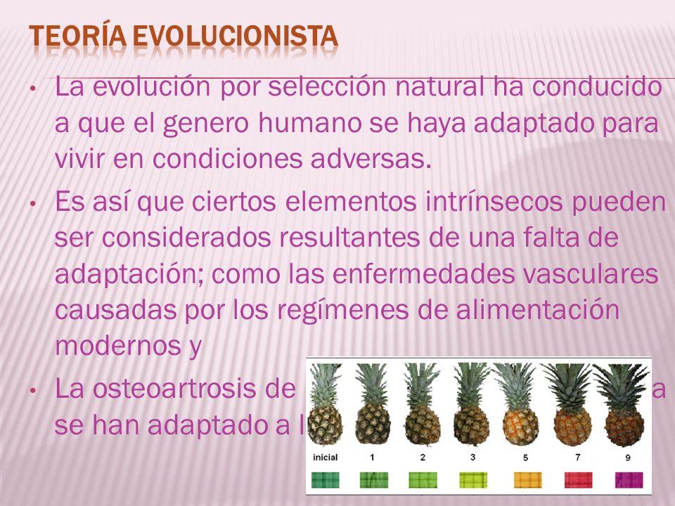 Teoría evolucionistaLa evolución por selección natural ha conducido a que el genero humano se haya adaptado para vivir en condiciones adversas.