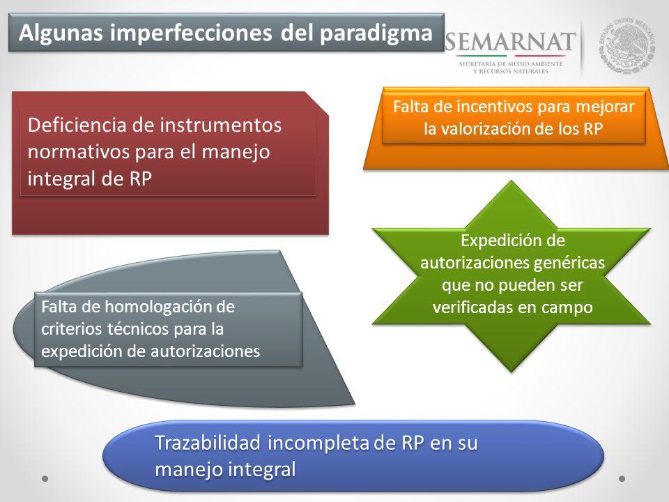 Algunas imperfecciones del paradigma