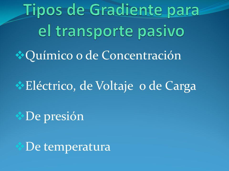 Tipos de Gradiente para el transporte pasivo