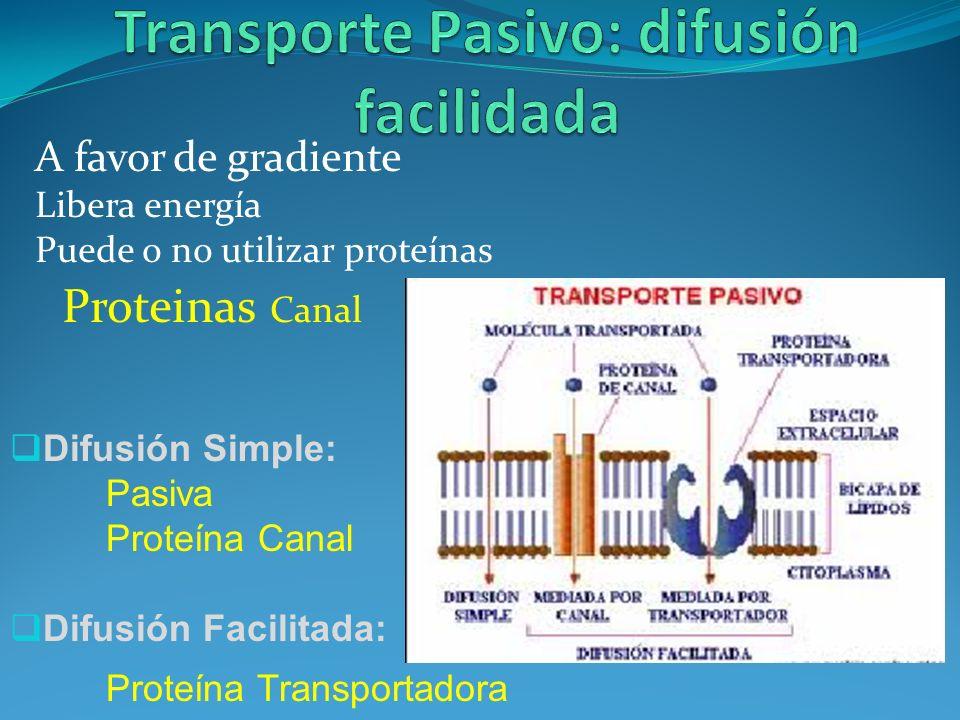 Transporte Pasivo: difusión facilidada