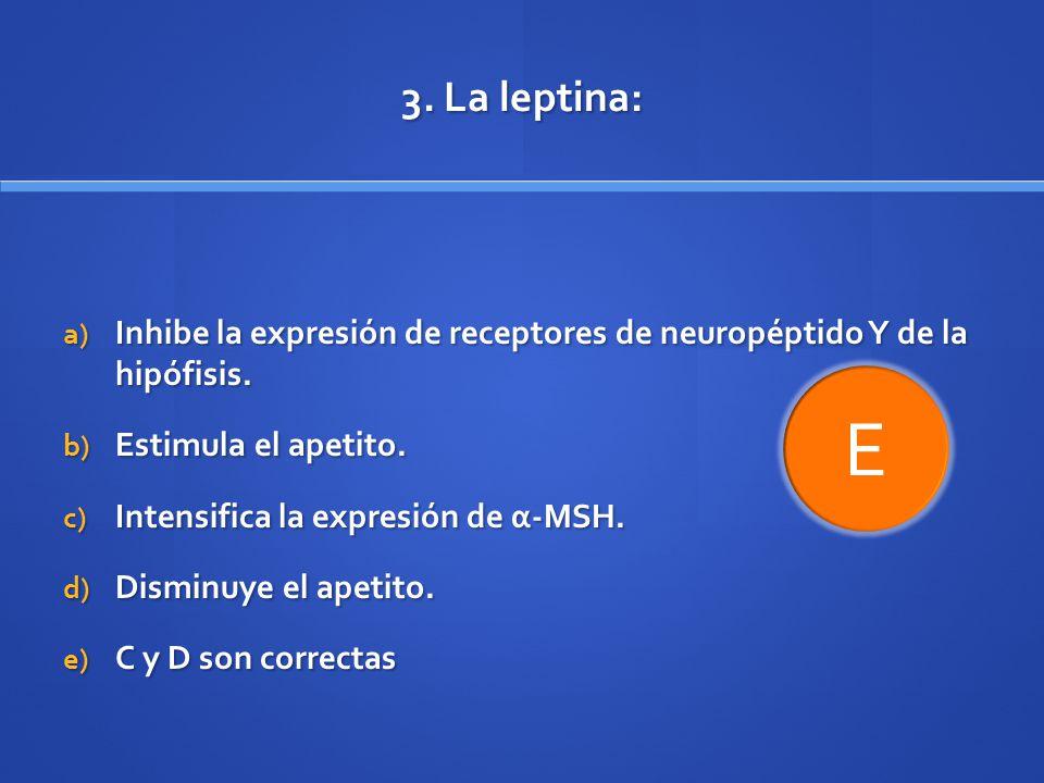 3. La leptina: Inhibe la expresión de receptores de neuropéptido Y de la hipófisis. Estimula el apetito.