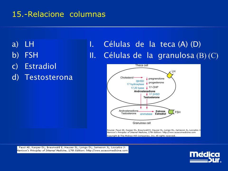 15.-Relacione columnas LH. FSH. Estradiol. Testosterona.