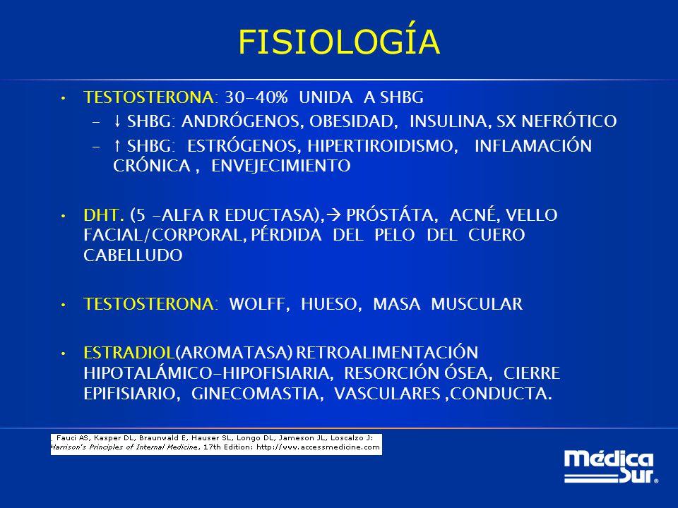 FISIOLOGÍA TESTOSTERONA: 30-40% UNIDA A SHBG