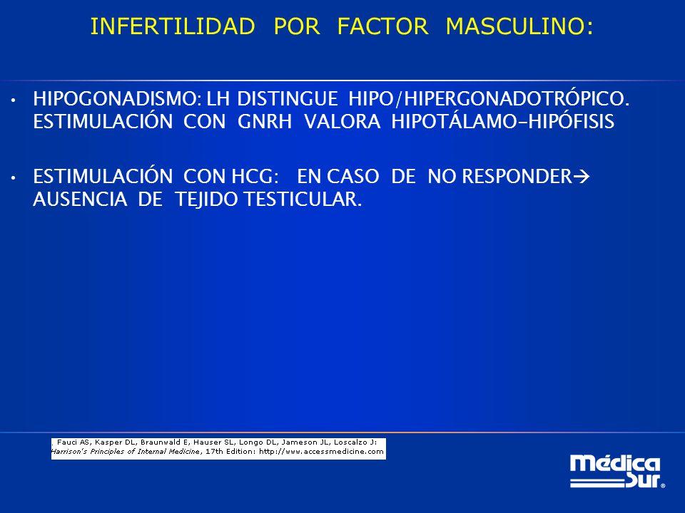 INFERTILIDAD POR FACTOR MASCULINO: