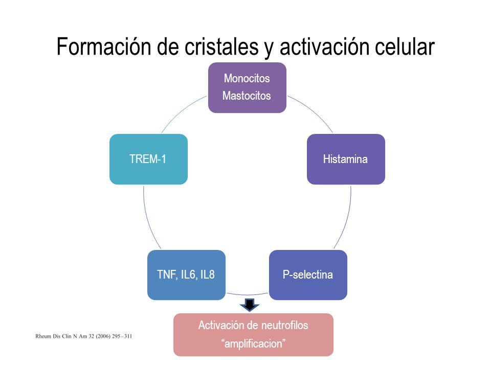 Formación de cristales y activación celular