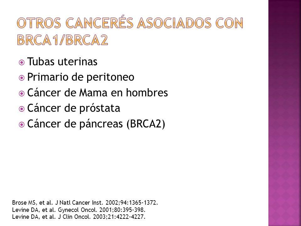Otros Cancerés Asociados con BRCA1/BRCA2