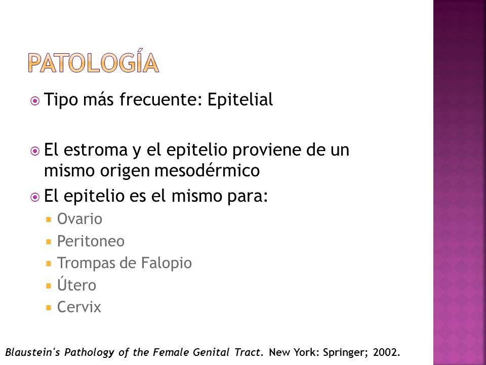 Patología Tipo más frecuente: Epitelial