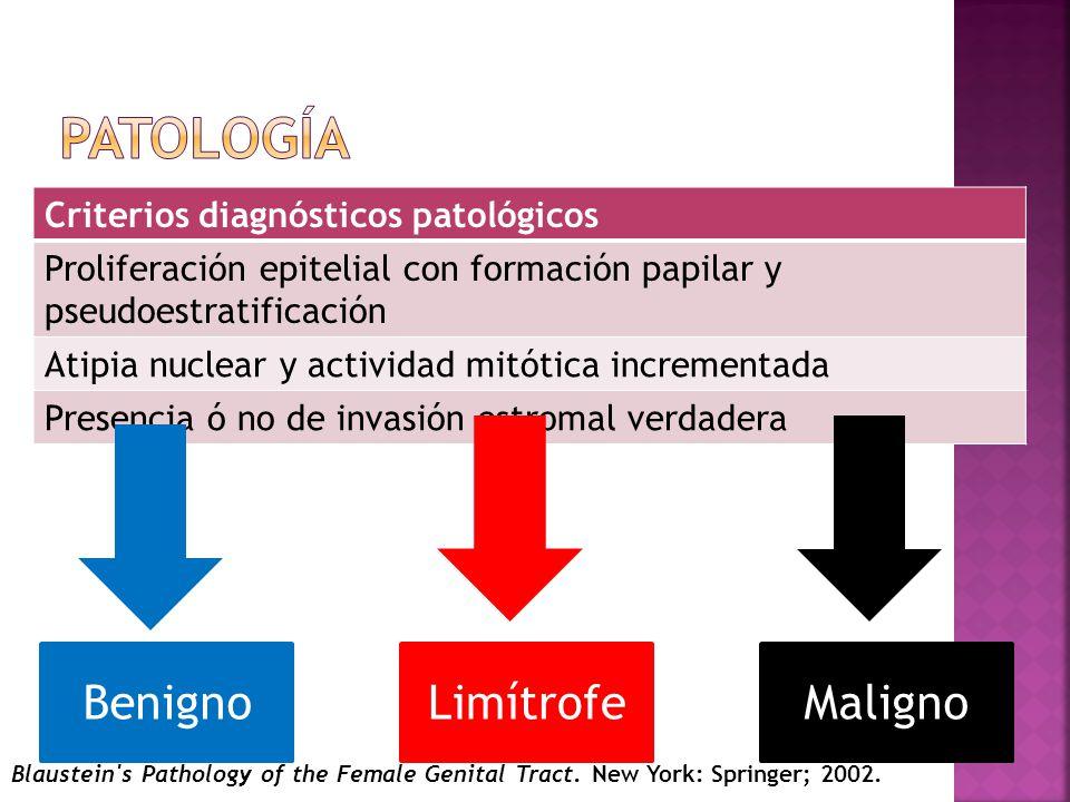 Patología Benigno Limítrofe Maligno Criterios diagnósticos patológicos