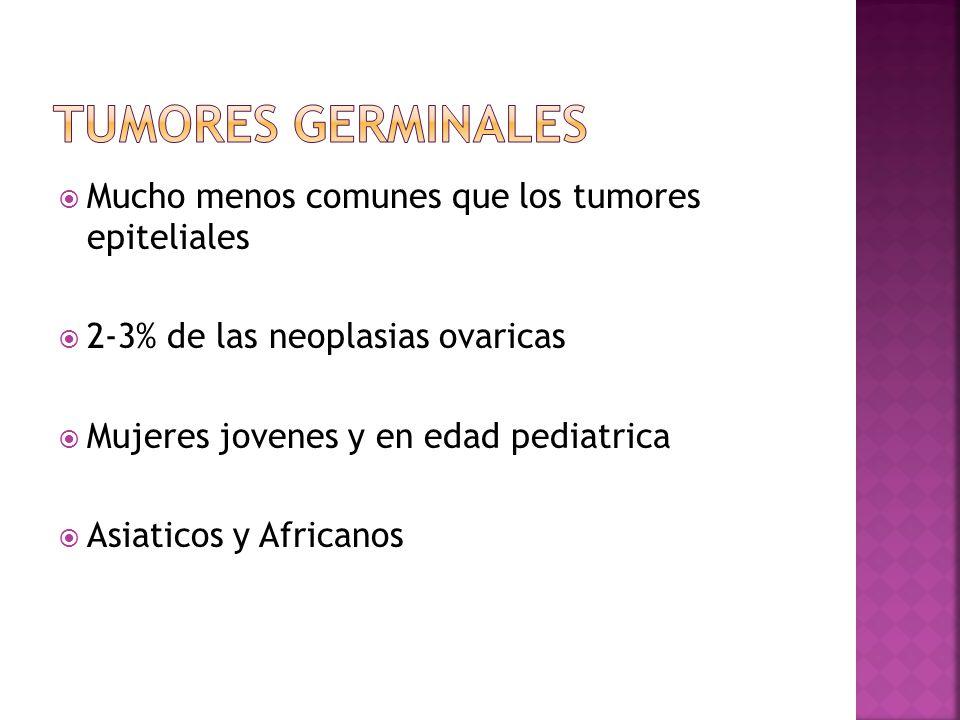 TUMORES GERMINALES Mucho menos comunes que los tumores epiteliales