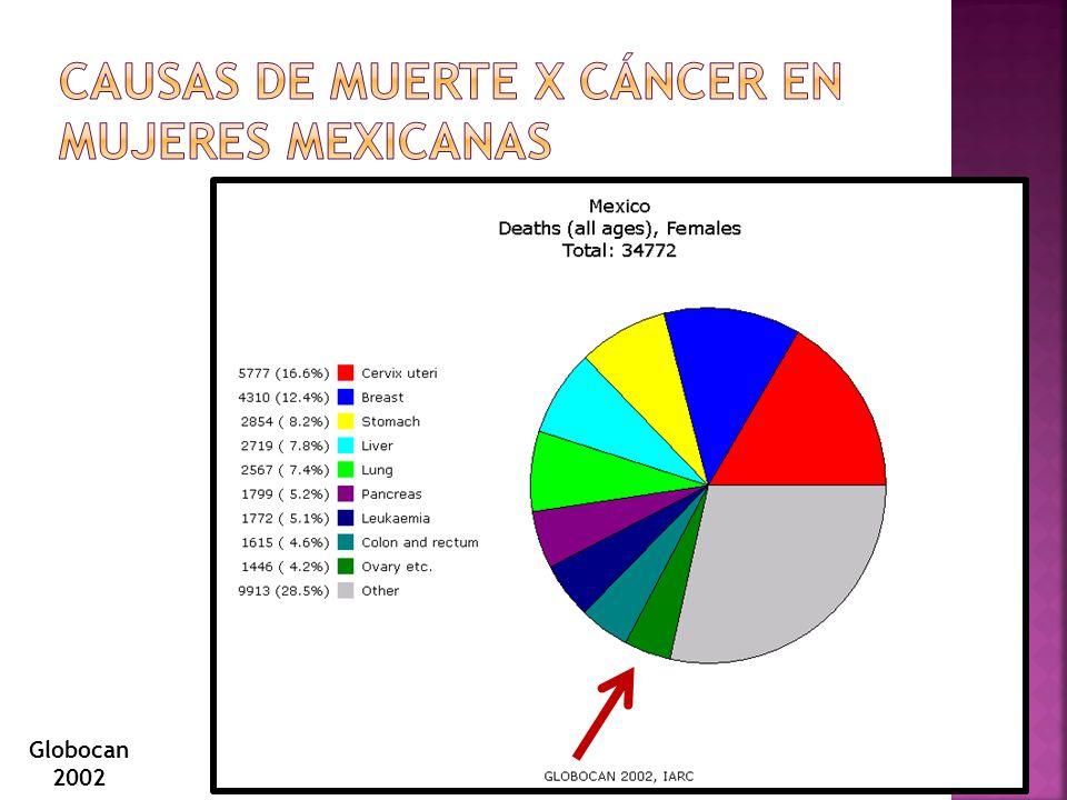 Causas de Muerte x cáncer en mujeres mexicanas