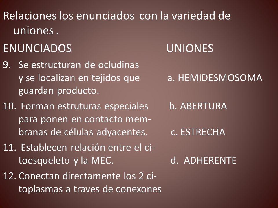 Relaciones los enunciados con la variedad de uniones .