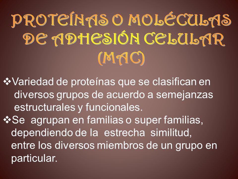 Variedad de proteínas que se clasifican en
