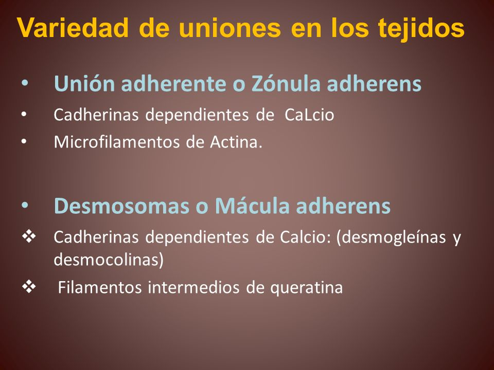 Variedad de uniones en los tejidos