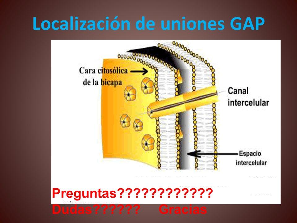 Localización de uniones GAP