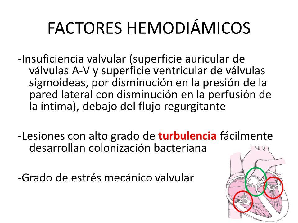 FACTORES HEMODIÁMICOS
