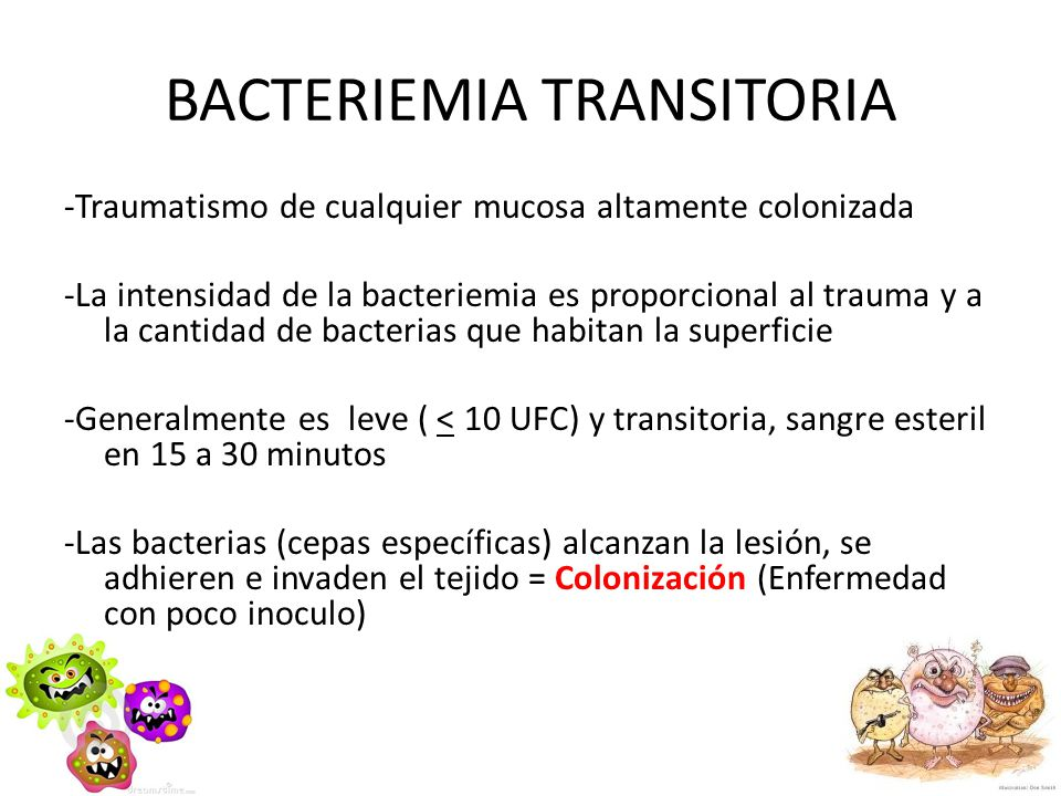 BACTERIEMIA TRANSITORIA