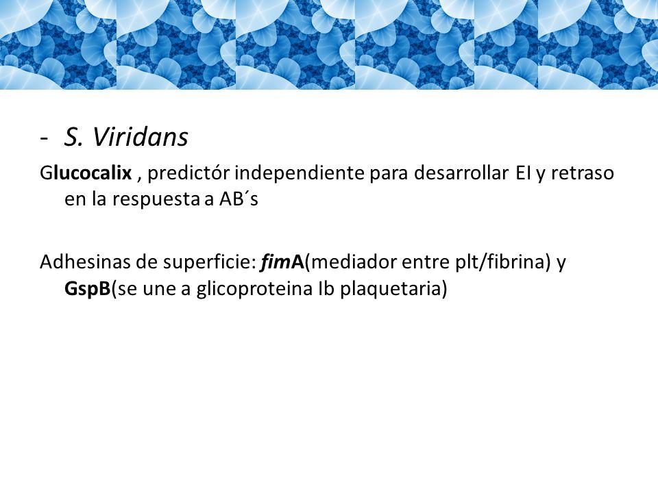 S. Viridans Glucocalix , predictór independiente para desarrollar EI y retraso en la respuesta a AB´s.